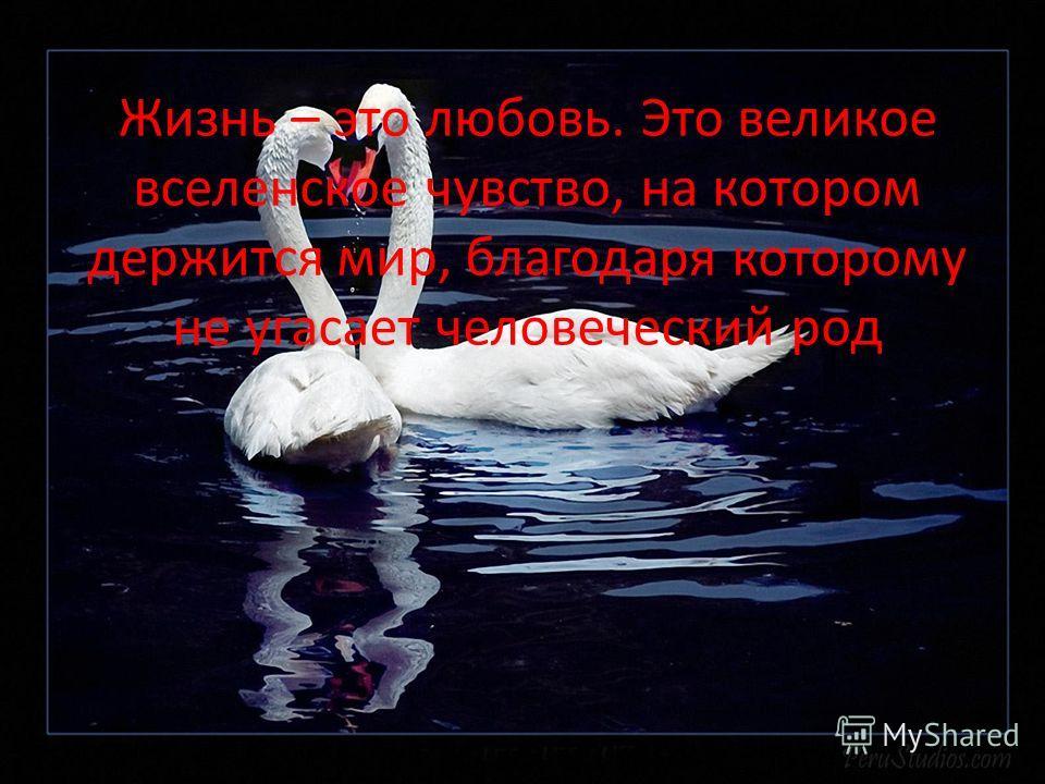 Жизнь – это любовь. Это великое вселенское чувство, на котором держится мир, благодаря которому не угасает человеческий род