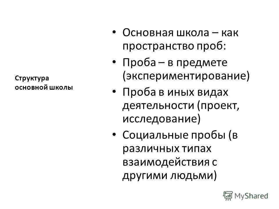 Структура основной школы Основная школа – как пространство проб: Проба – в предмете (экспериментирование) Проба в иных видах деятельности (проект, исследование) Социальные пробы (в различных типах взаимодействия с другими людьми)