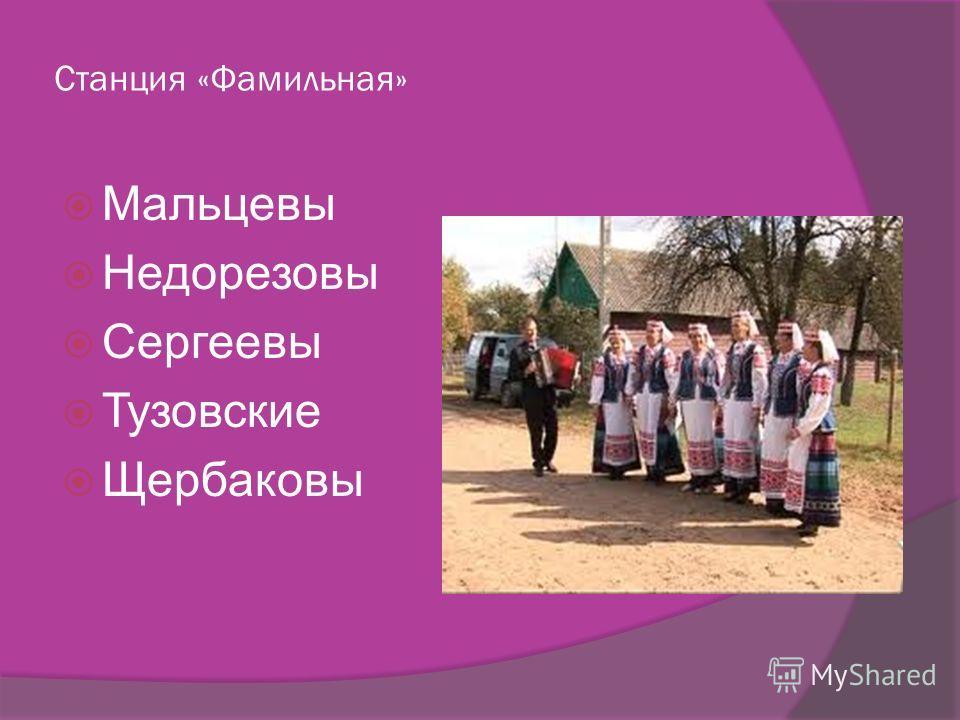 Станция «Фамильная» Мальцевы Недорезовы Сергеевы Тузовские Щербаковы