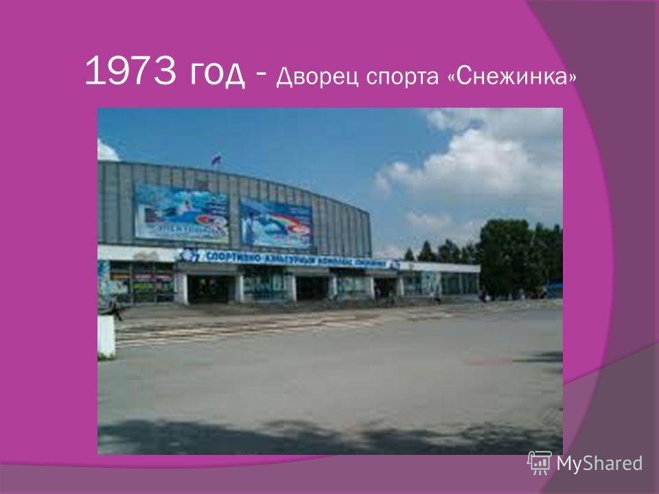 1973 год - Дворец спорта « С нежинка»