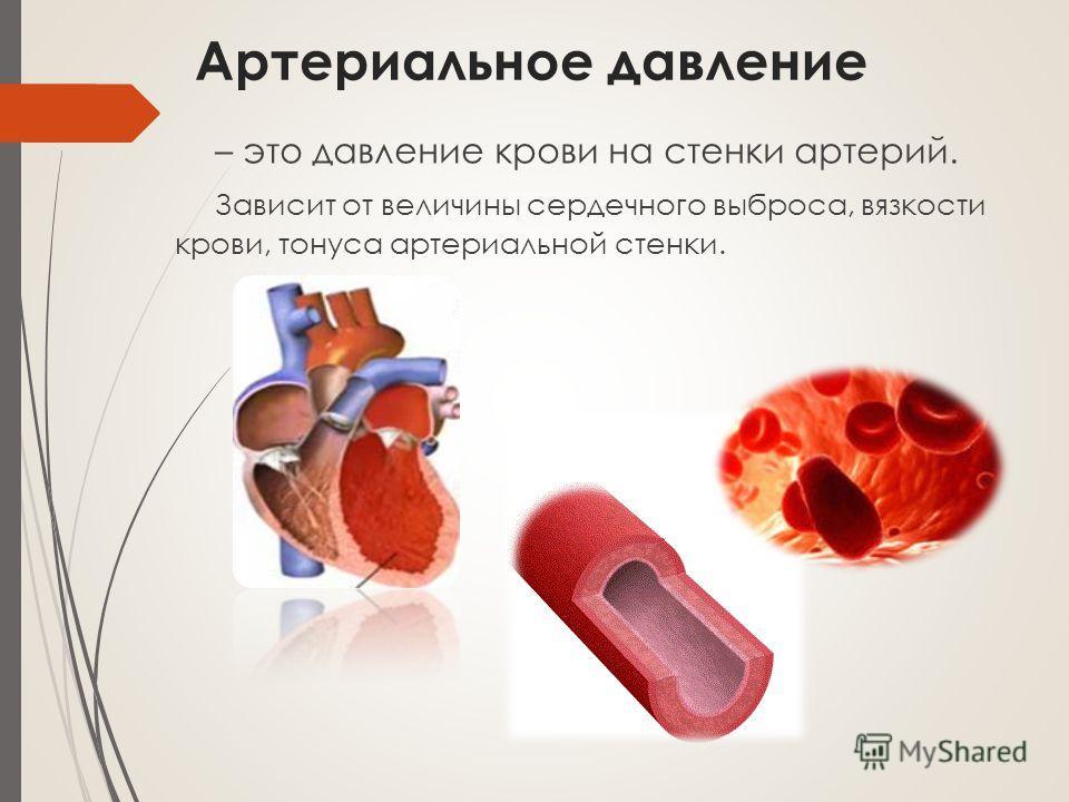 Артериальное давление – это давление крови на стенки артерий. Зависит от величины сердечного выброса, вязкости крови, тонуса артериальной стенки.