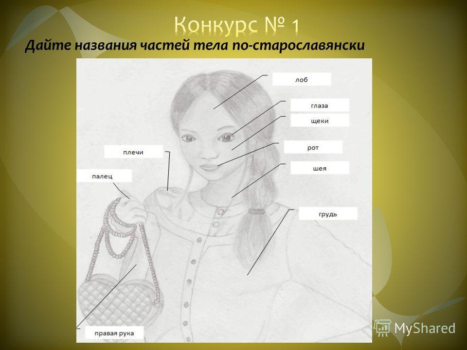 Дайте названия частей тела по-старославянски