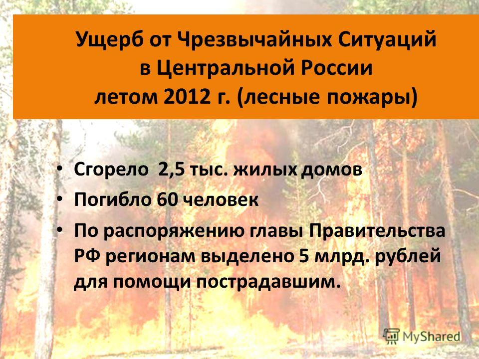 Ущерб от Чрезвычайных Ситуаций в Центральной России летом 2012 г. (лесные пожары) Сгорело 2,5 тыс. жилых домов Погибло 60 человек По распоряжению главы Правительства РФ регионам выделено 5 млрд. рублей для помощи пострадавшим.