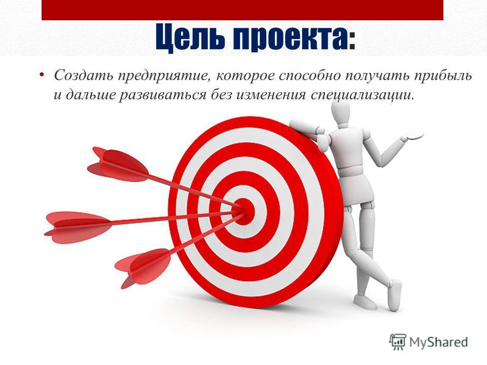 Цель проекта: Создать предприятие, которое способно получать прибыль и дальше развиваться без изменения специализации.