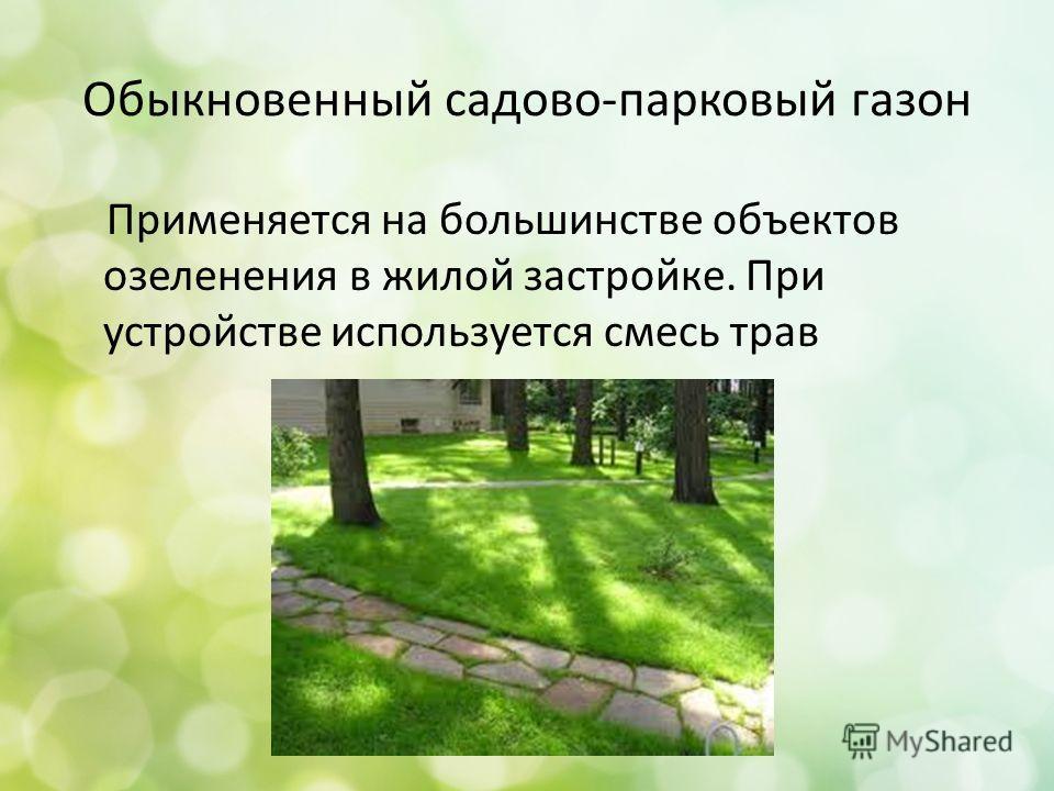 Обыкновенный садово-парковый газон Применяется на большинстве объектов озеленения в жилой застройке. При устройстве используется смесь трав