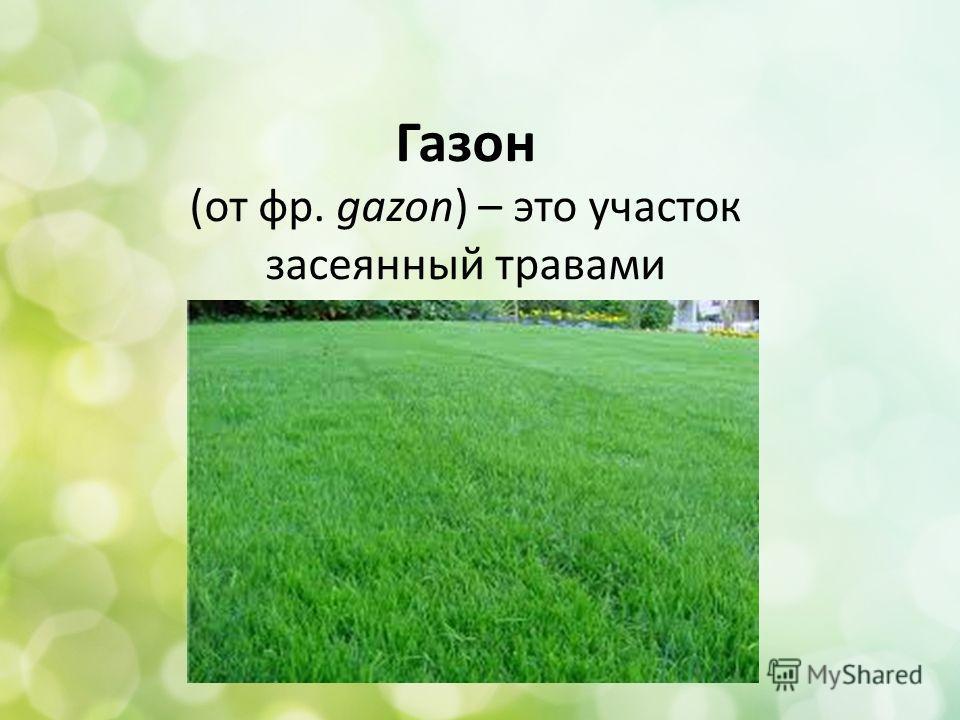 Газон (от фр. gazon) – это участок засеянный травами