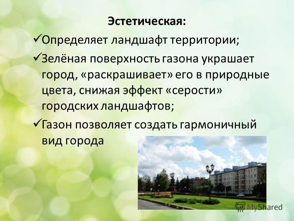Эстетическая: Определяет ландшафт территории; Зелёная поверхность газона украшает город, «раскрашивает» его в природные цвета, снижая эффект «серости» городских ландшафтов; Газон позволяет создать гармоничный вид города