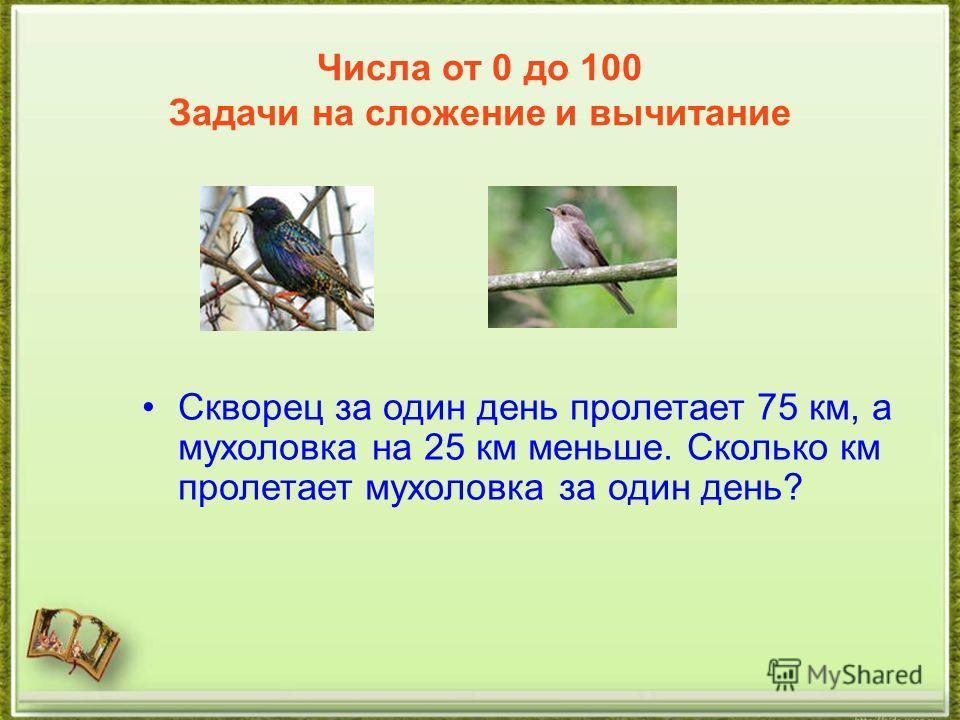 Числа от 0 до 100 Задачи на сложение и вычитание Скворец за один день пролетает 75 км, а мухоловка на 25 км меньше. Сколько км пролетает мухоловка за один день?