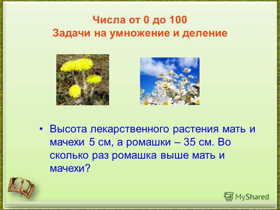 Числа от 0 до 100 Задачи на умножение и деление Высота лекарственного растения мать и мачехи 5 см, а ромашки – 35 см. Во сколько раз ромашка выше мать и мачехи?