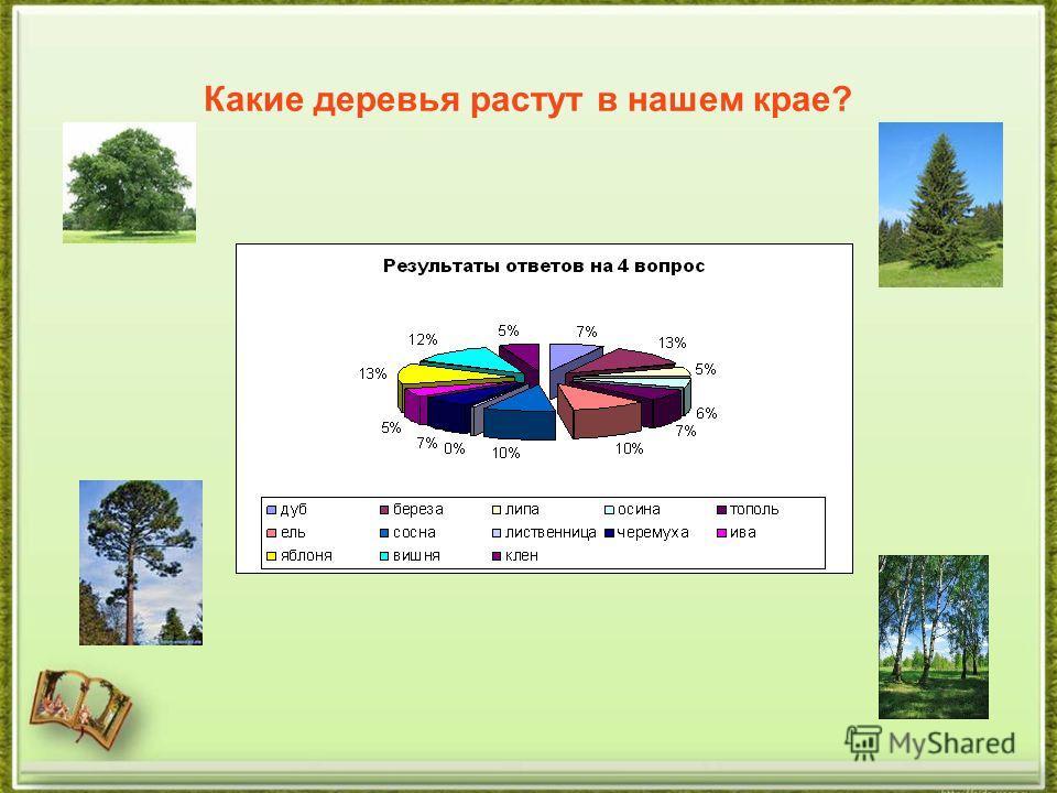 Какие деревья растут в нашем крае?