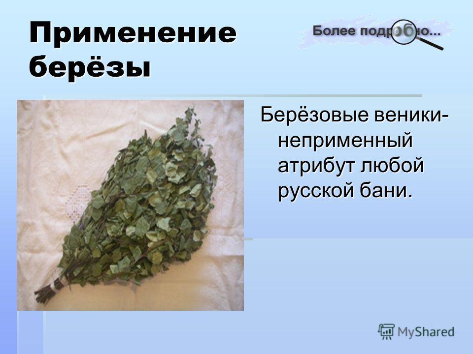 Берёзовые веники- неприменный атрибут любой русской бани.