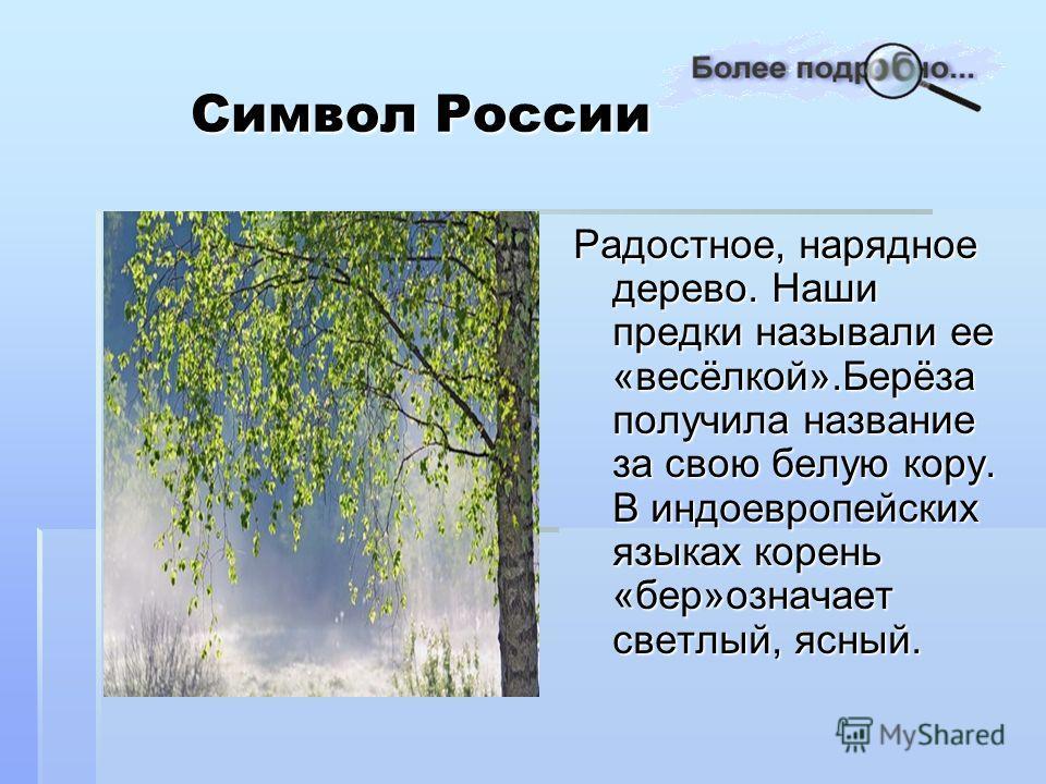 Символ России Символ России Радостное, нарядное дерево. Наши предки называли ее «весёлкой».Берёза получила название за свою белую кору. В индоевропейских языках корень «бер»означает светлый, ясный.