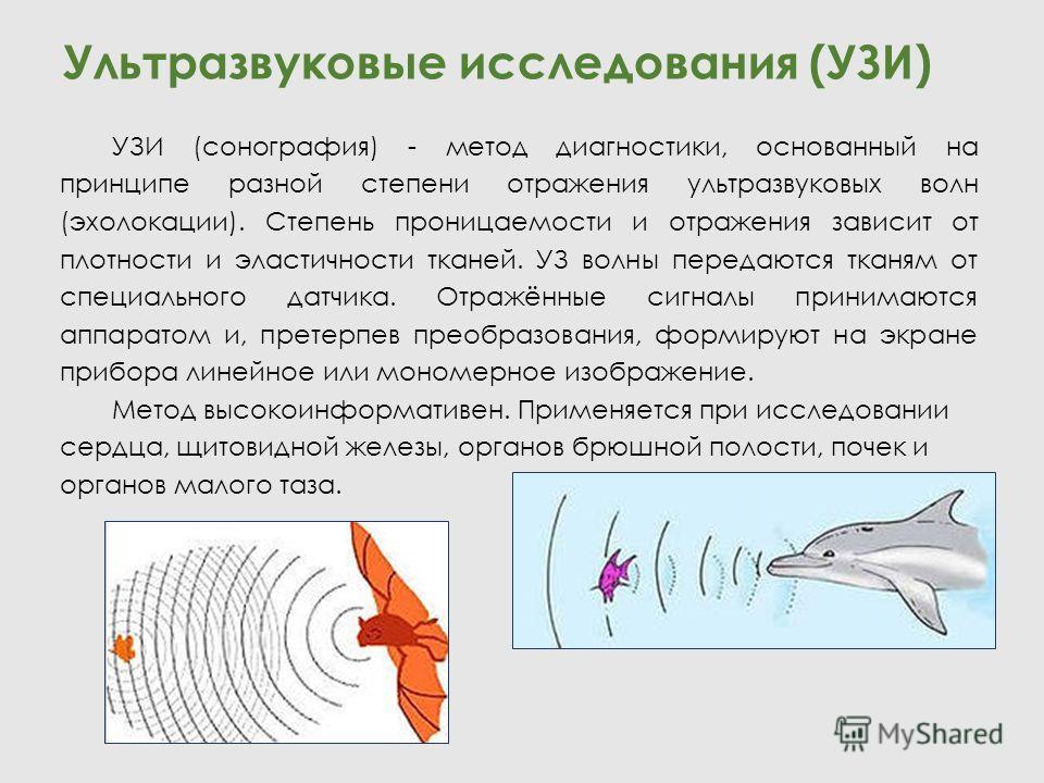 Ультразвуковые исследования (УЗИ) УЗИ (сонография) - метод диагностики, основанный на принципе разной степени отражения ультразвуковых волн (эхолокации). Степень проницаемости и отражения зависит от плотности и эластичности тканей. УЗ волны передаютс