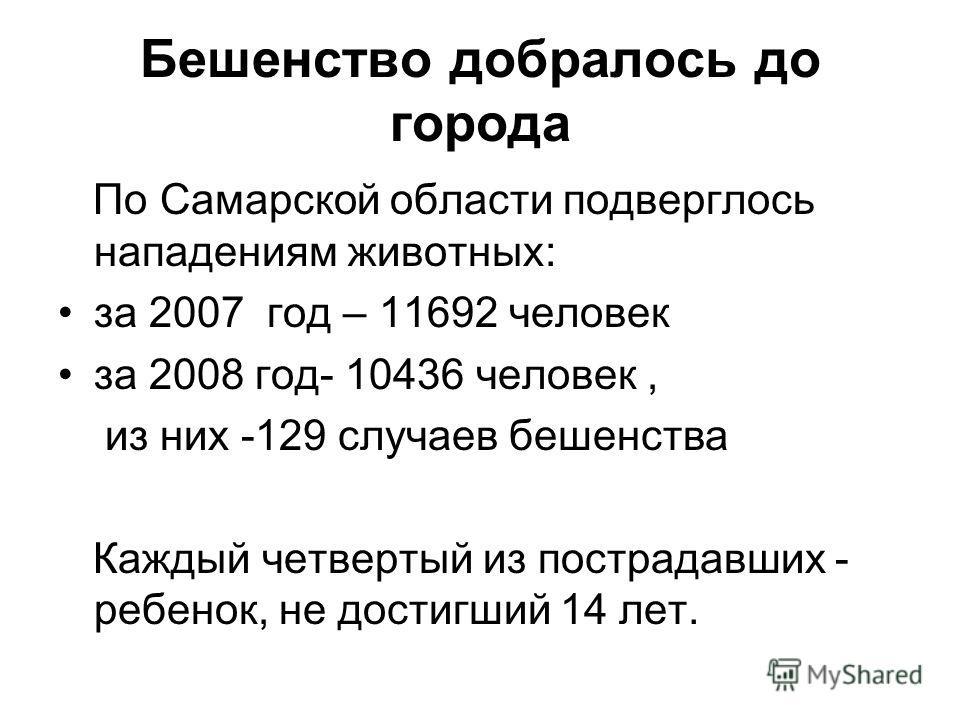 Бешенство добралось до города По Самарской области подверглось нападениям животных: за 2007 год – 11692 человек за 2008 год- 10436 человек, из них -129 случаев бешенства Каждый четвертый из пострадавших - ребенок, не достигший 14 лет.