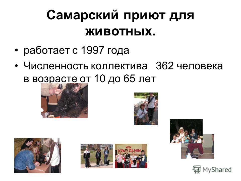 Самарский приют для животных. работает с 1997 года Численность коллектива 362 человека в возрасте от 10 до 65 лет