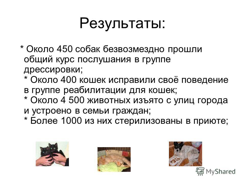 Результаты: * Около 450 собак безвозмездно прошли общий курс послушания в группе дрессировки; * Около 400 кошек исправили своё поведение в группе реабилитации для кошек; * Около 4 500 животных изъято с улиц города и устроено в семьи граждан; * Более