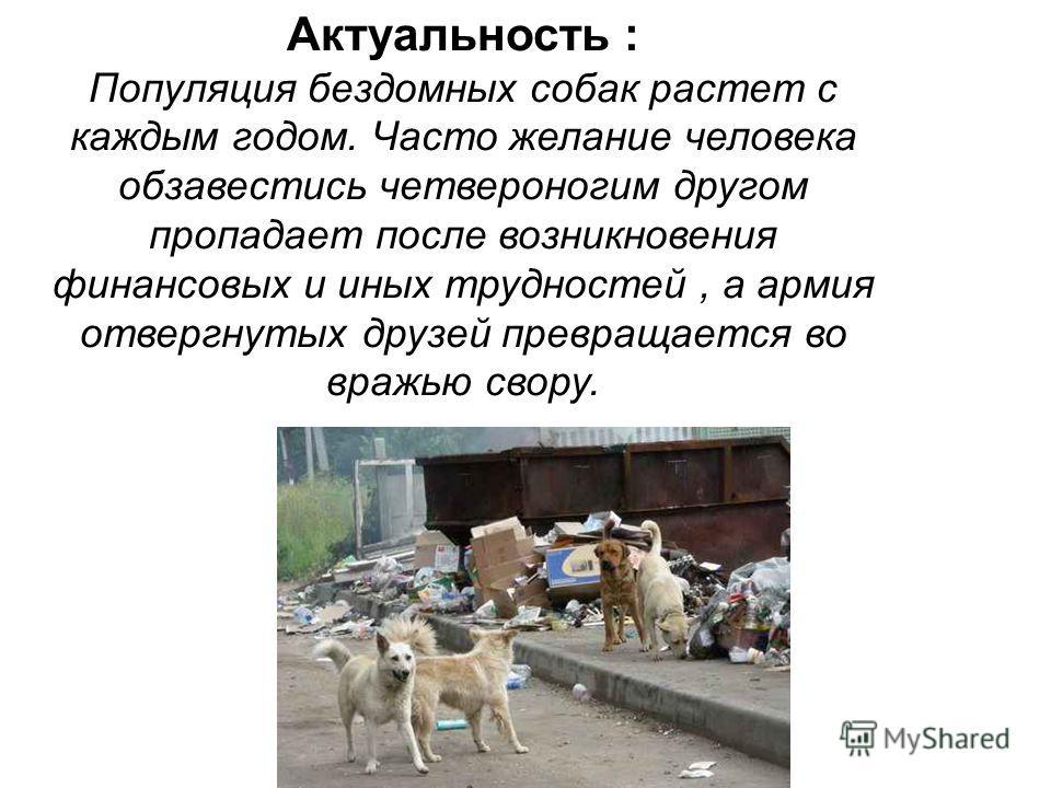 Актуальность : Популяция бездомных собак растет с каждым годом. Часто желание человека обзавестись четвероногим другом пропадает после возникновения финансовых и иных трудностей, а армия отвергнутых друзей превращается во вражью свору.