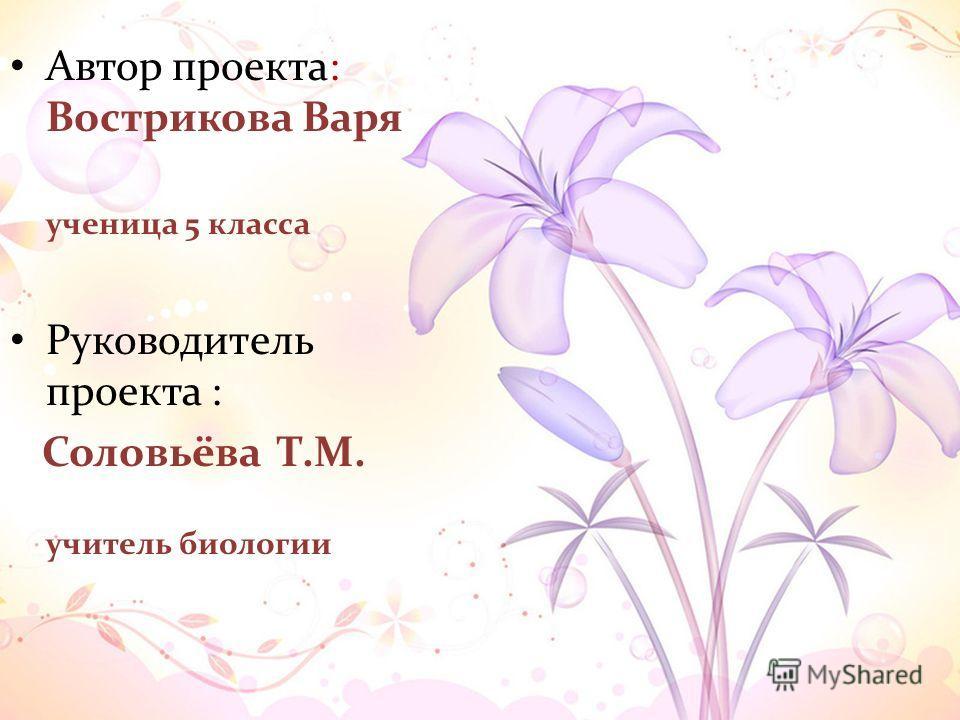 Автор проекта: Вострикова Варя ученица 5 класса Руководитель проекта : Соловьёва Т.М. учитель биологии