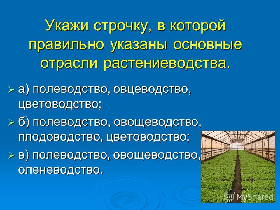 Укажи строчку, в которой правильно указаны основные отрасли растениеводства. а) полеводство, овцеводство, цветоводство; а) полеводство, овцеводство, цветоводство; б) полеводство, овощеводство, плодоводство, цветоводство; б) полеводство, овощеводство,