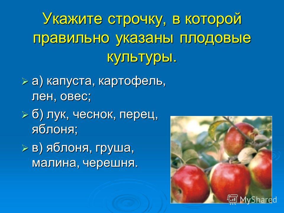 Укажите строчку, в которой правильно указаны плодовые культуры. а) капуста, картофель, лен, овес; а) капуста, картофель, лен, овес; б) лук, чеснок, перец, яблоня; б) лук, чеснок, перец, яблоня; в) яблоня, груша, малина, черешня. в) яблоня, груша, мал