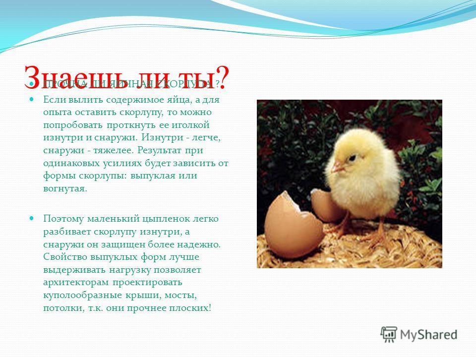 Знаешь ли ты? ПРОЧНА ЛИ ЯИЧНАЯ СКОРЛУПА ? Если вылить содержимое яйца, а для опыта оставить скорлупу, то можно попробовать проткнуть ее иголкой изнутри и снаружи. Изнутри - легче, снаружи - тяжелее. Результат при одинаковых усилиях будет зависить от