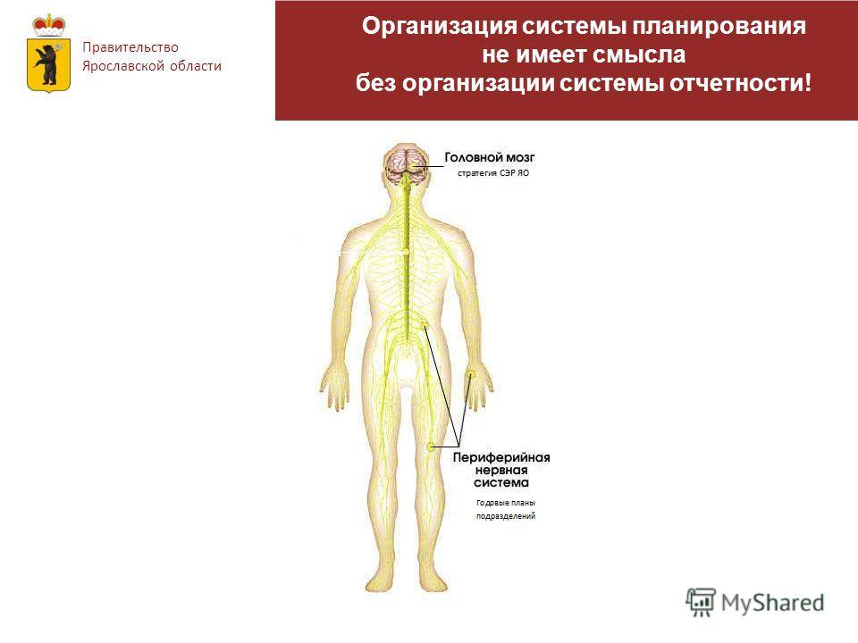 Организация системы планирования не имеет смысла без организации системы отчетности! Правительство Ярославской области