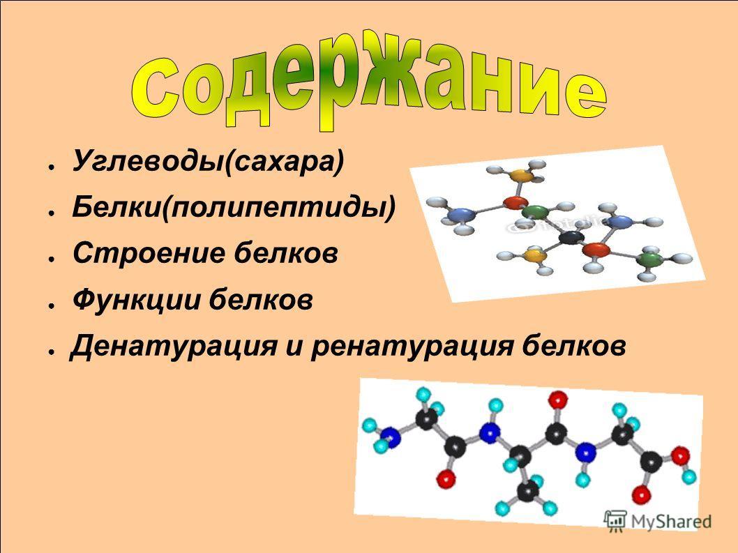 Углеводы(сахара) Белки(полипептиды) Строение белков Функции белков Денатурация и ренатурация белков