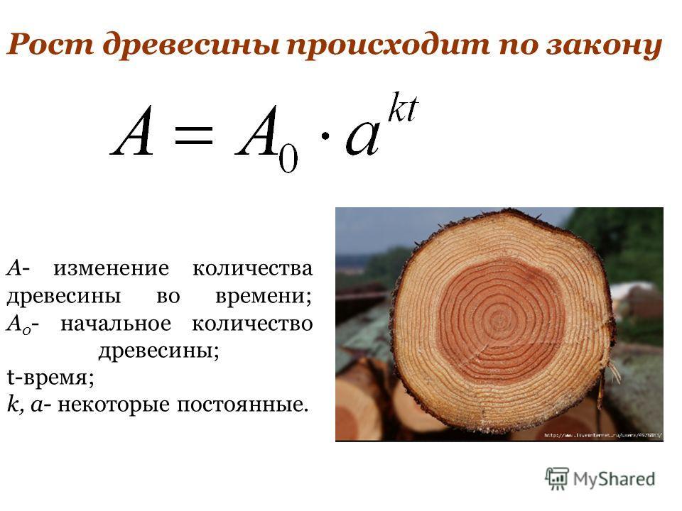 Рост древесины происходит по закону A- изменение количества древесины во времени; A 0 - начальное количество древесины; t-время; k, а- некоторые постоянные.