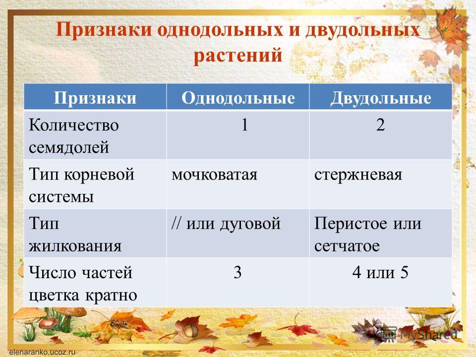 Признаки однодольных и двудольных растений ПризнакиОднодольныеДвудольные Количество семядолей 12 Тип корневой системы мочковатаястержневая Тип жилкования // или дуговойПеристое или сетчатое Число частей цветка кратно 34 или 5