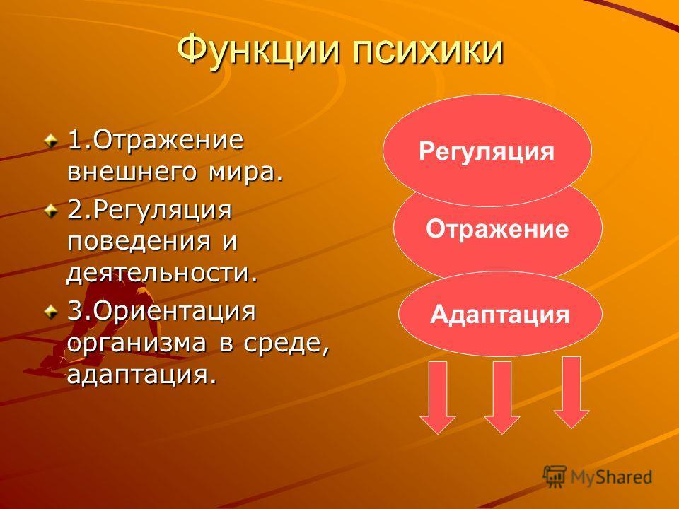 Функции психики 1.Отражение внешнего мира. 2.Регуляция поведения и деятельности. 3.Ориентация организма в среде, адаптация. Отражение Регуляция Адаптация