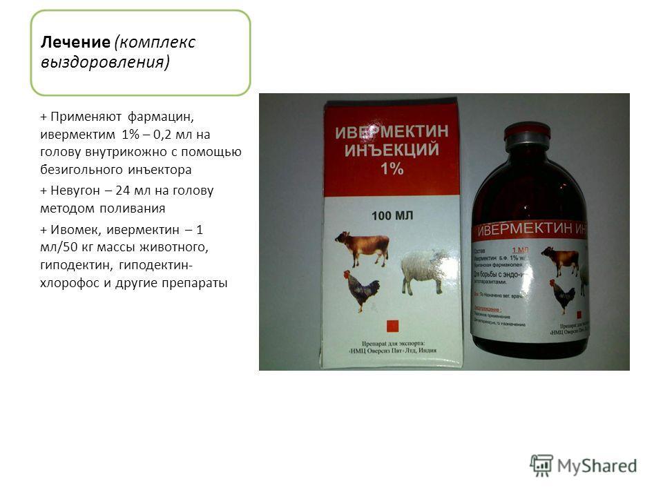 Лечение (комплекс выздоровления) + Применяют фармацин, ивермектим 1% – 0,2 мл на голову внутрикожно с помощью безигольного инъектора + Невугон – 24 мл на голову методом поливания + Ивомек, ивермектин – 1 мл/50 кг массы животного, гиподектин, гиподект
