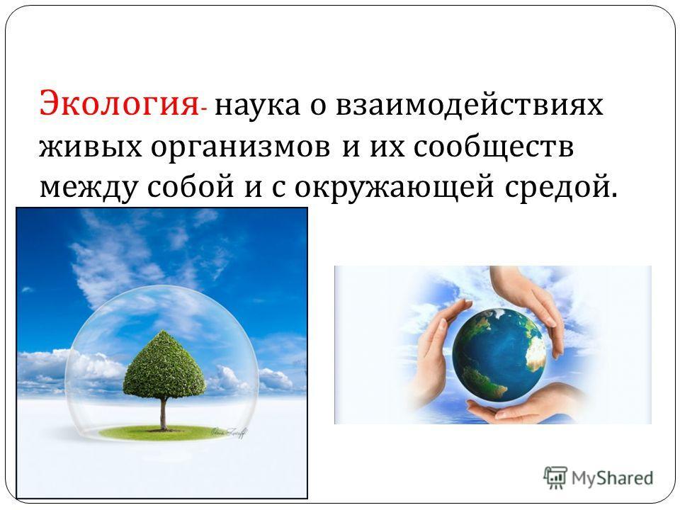 Экология - наука о взаимодействиях живых организмов и их сообществ между собой и с окружающей средой.