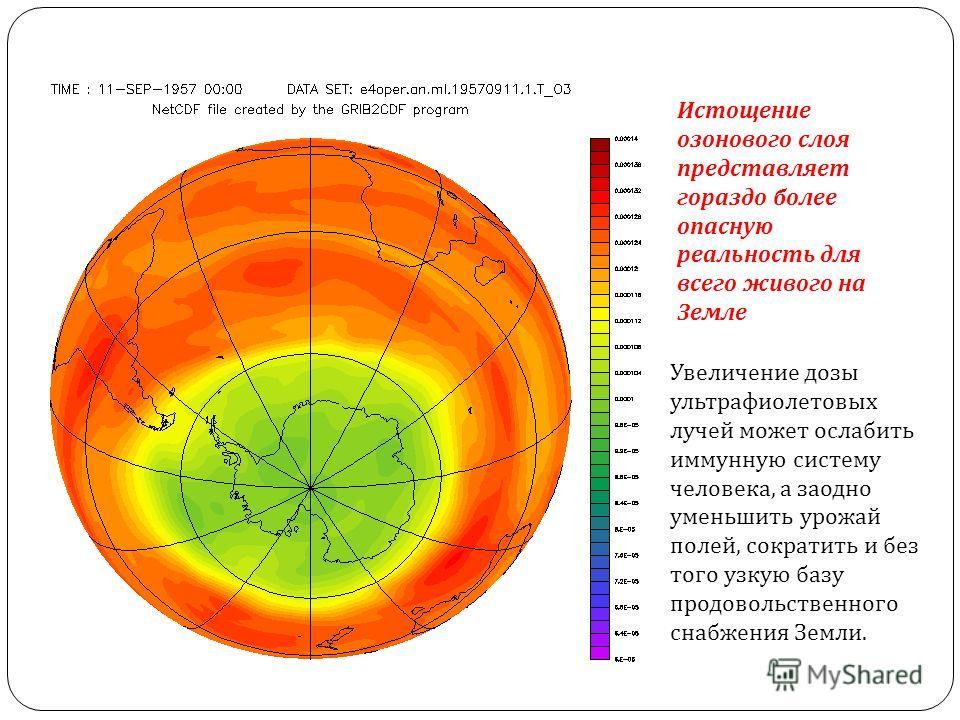 Истощение озонового слоя представляет гораздо более опасную реальность для всего живого на Земле Увеличение дозы ультрафиолетовых лучей может ослабить иммунную систему человека, а заодно уменьшить урожай полей, сократить и без того узкую базу продово