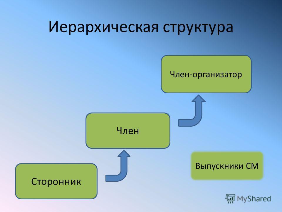 Иерархическая структура Сторонник Член-организатор Член Выпускники СМ