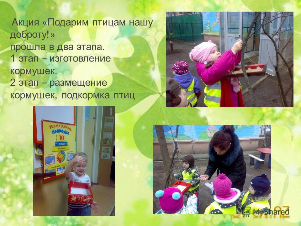 Акция « Подарим птицам нашу доброту! » прошла в два этапа. 1 этап – изготовление кормушек. 2 этап – размещение кормушек, подкормка птиц