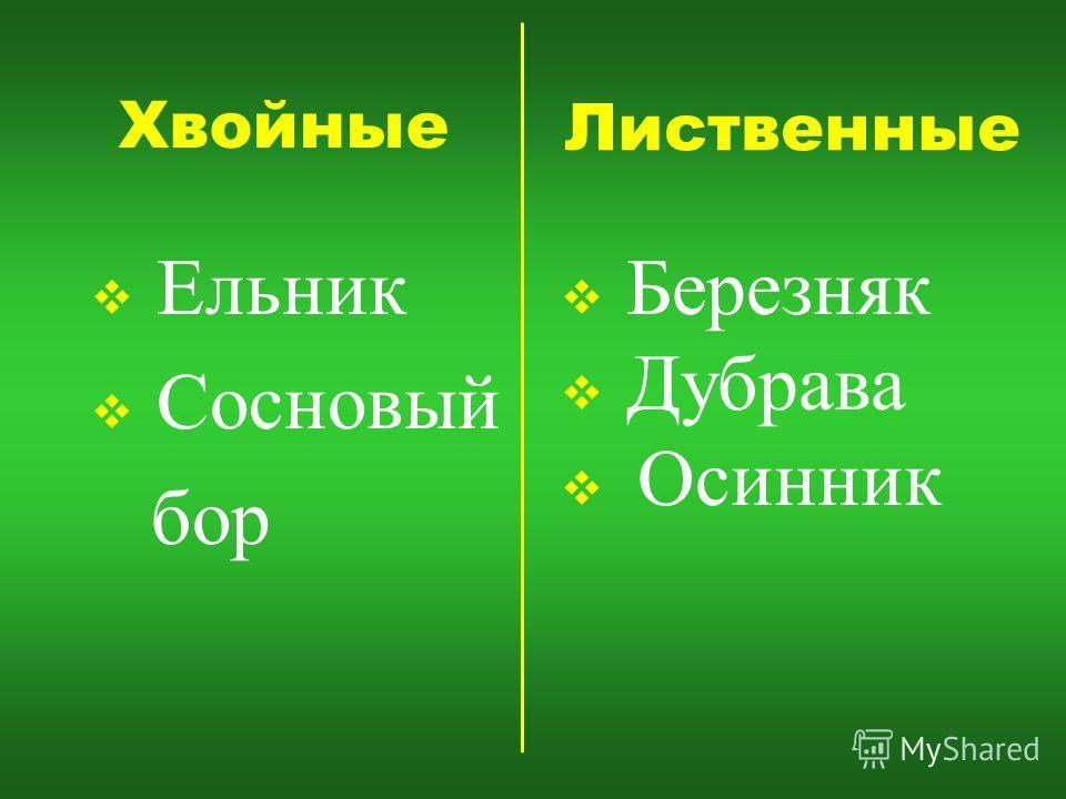 Хвойные Ельник Сосновый бор Лиственные Березняк Дубрава Осинник