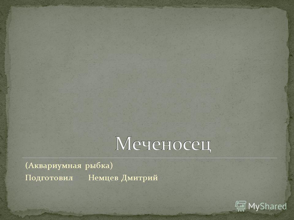 (Аквариумная рыбка) Подготовил Немцев Дмитрий