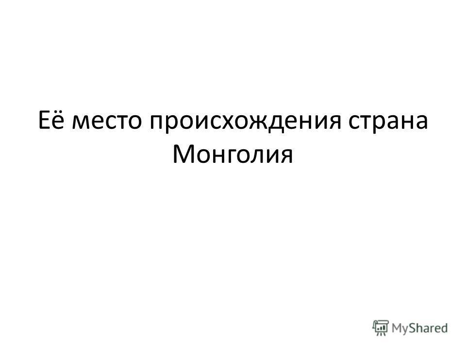 Её место происхождения страна Монголия