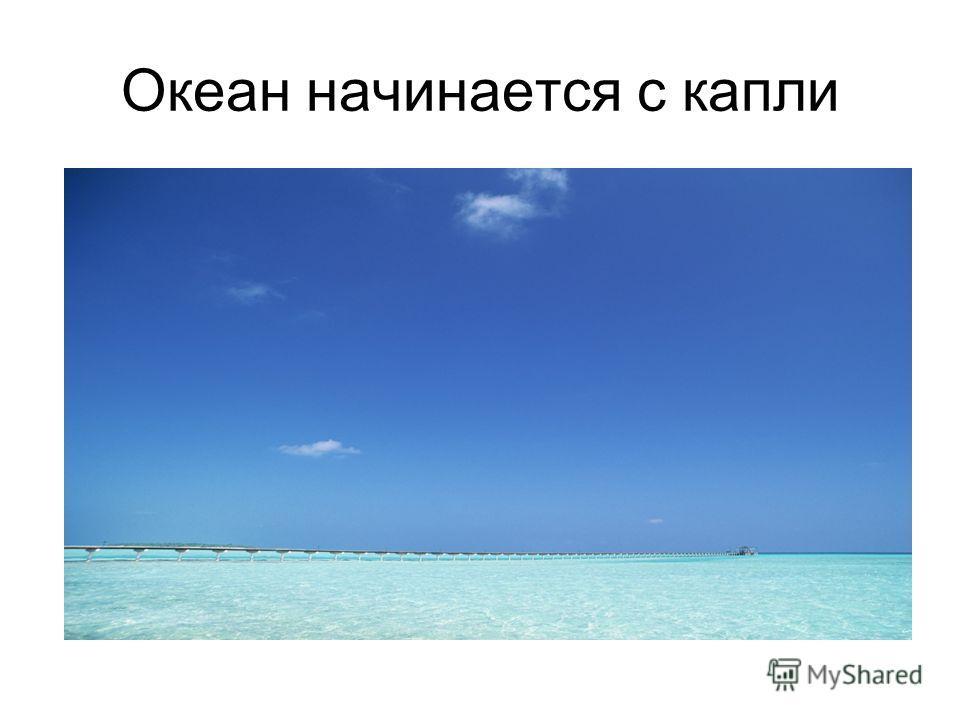 Океан начинается с капли
