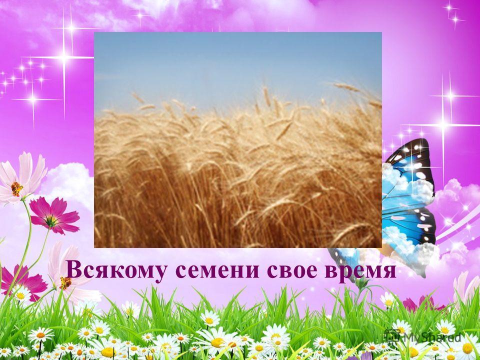 Всякому семени свое время