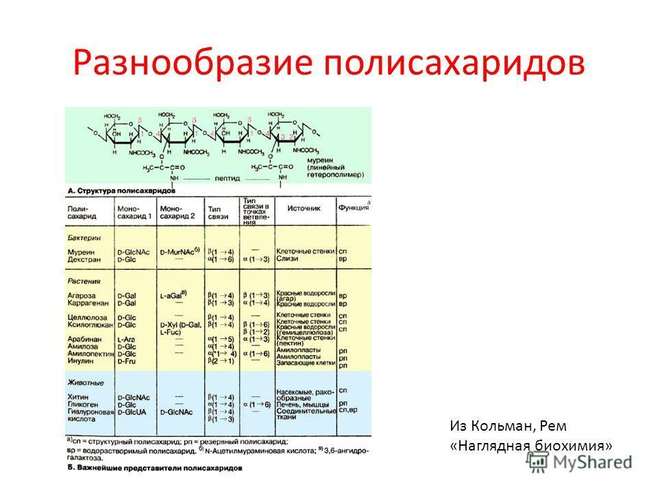 Разнообразие полисахаридов Из Кольман, Рем «Наглядная биохимия»