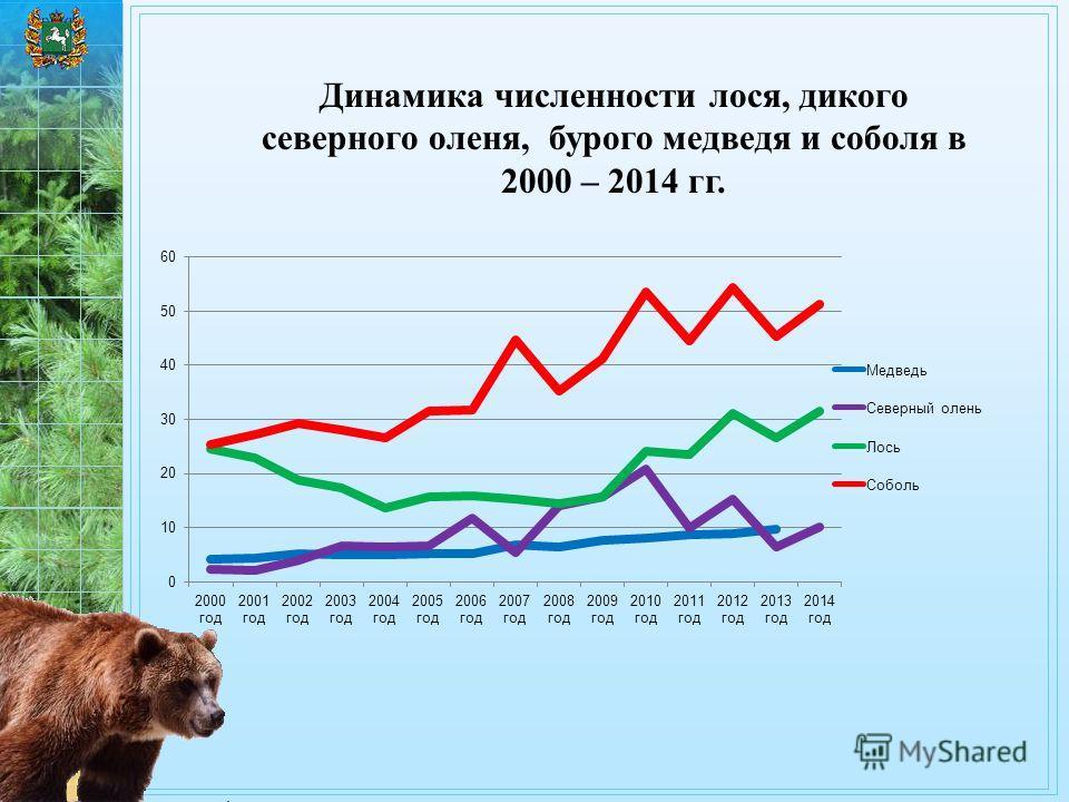Динамика численности лося, дикого северного оленя, бурого медведя и соболя в 2000 – 2014 гг.