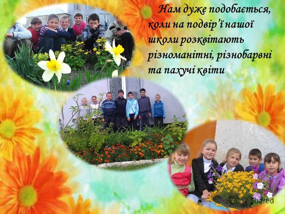 Нам дуже подобається, коли на подвірї нашої школи розквітають різноманітні, різнобарвні та пахучі квіти