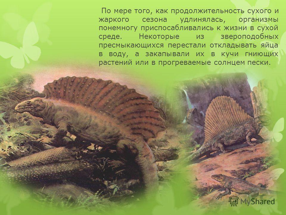 По мере того, как продолжительность сухого и жаркого сезона удлинялась, организмы понемногу приспосабливались к жизни в сухой среде. Некоторые из звероподобных пресмыкающихся перестали откладывать яйца в воду, а закапывали их в кучи гниющих растений