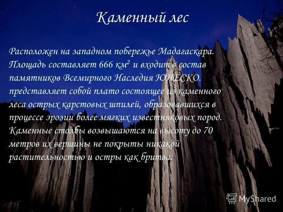 Каменный лес Расположен на западном побережье Мадагаскара. Площадь составляет 666 км 2 и входит в состав памятников Всемирного Наследия ЮНЕСКО. представляет собой плато состоящее из каменного леса острых карстовых шпилей, образовавшихся в процессе эр