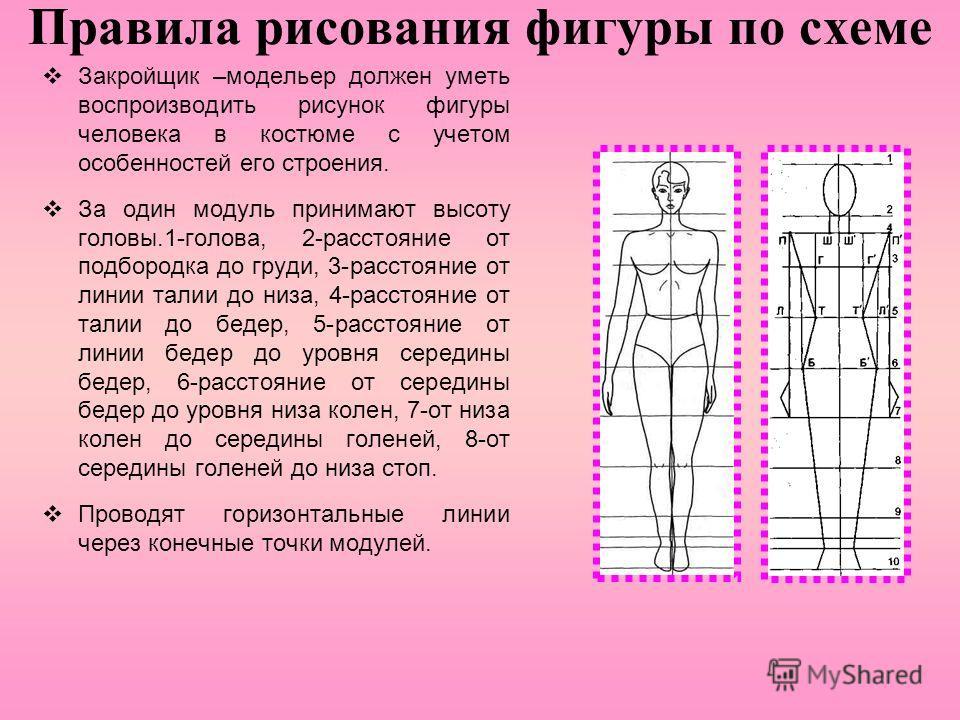 Правила рисования фигуры по схеме Закройщик –модельер должен уметь воспроизводить рисунок фигуры человека в костюме с учетом особенностей его строения. За один модуль принимают высоту головы.1-голова, 2-расстояние от подбородка до груди, 3-расстояние