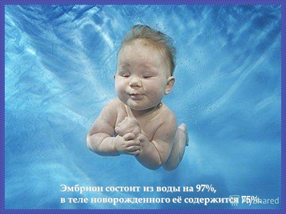 Эмбрион состоит из воды на 97%, в теле новорожденного её содержится 75%.