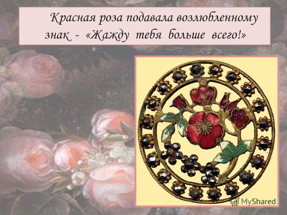 Красная роза подавала возлюбленному знак - «Жажду тебя больше всего!»