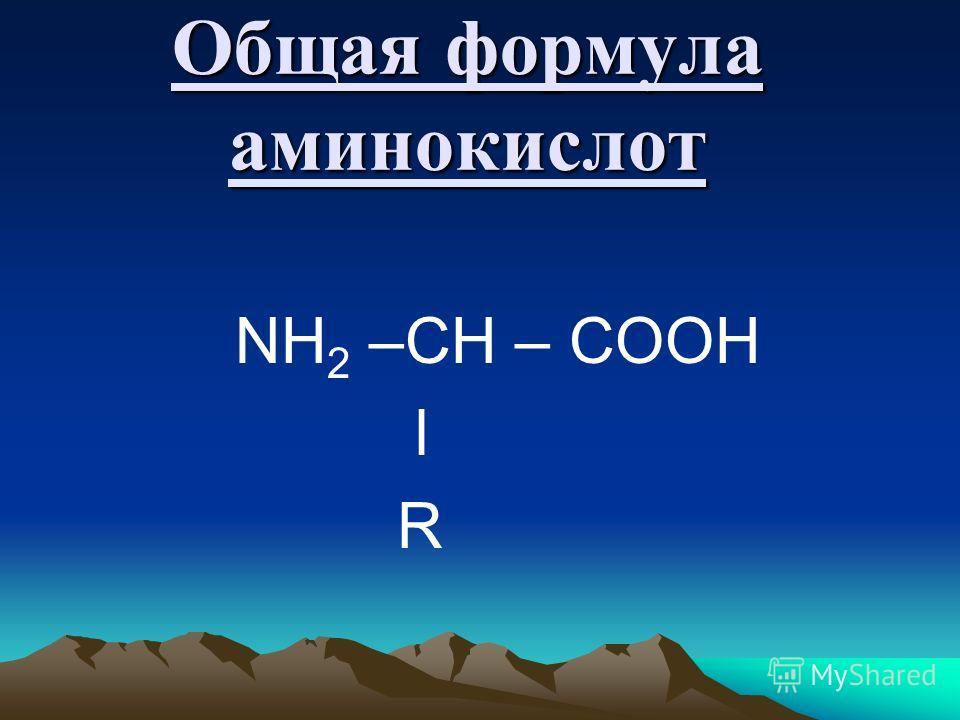 Общая формула аминокислот NH 2 –CH – COOH l R