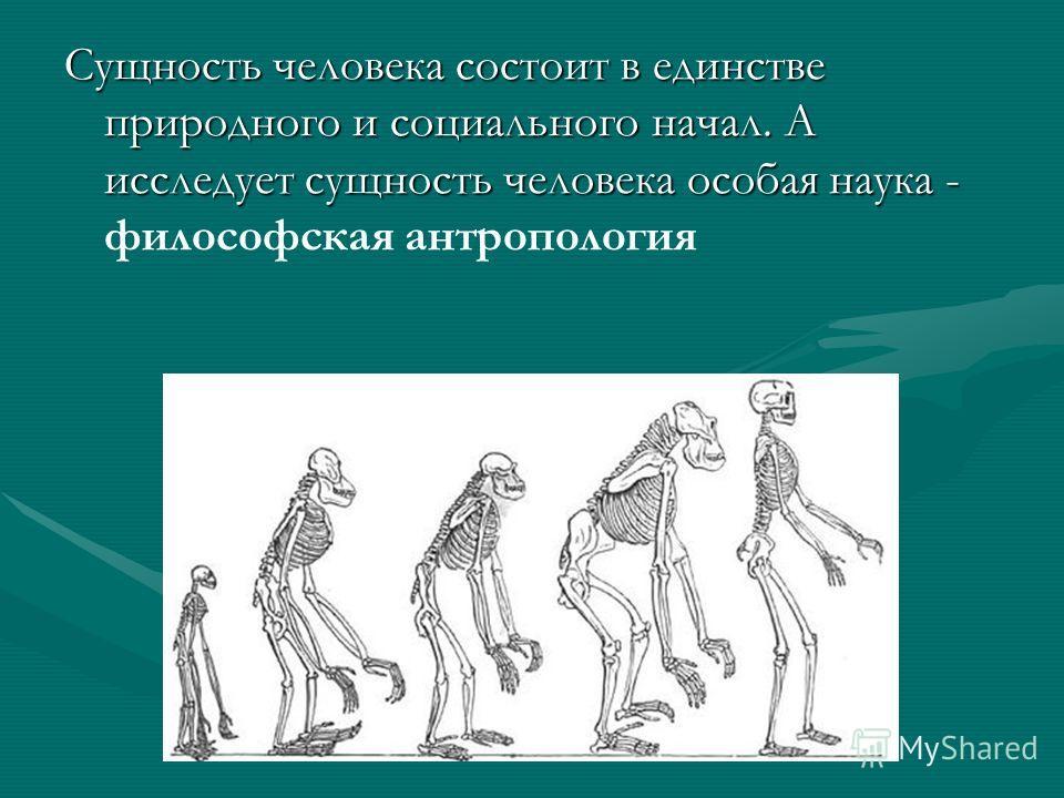Сущность человека состоит в единстве природного и социального начал. А исследует сущность человека особая наука - Сущность человека состоит в единстве природного и социального начал. А исследует сущность человека особая наука - философская антрополог